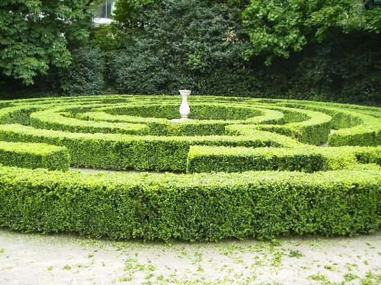 The Maze at the Iveagh Gardens